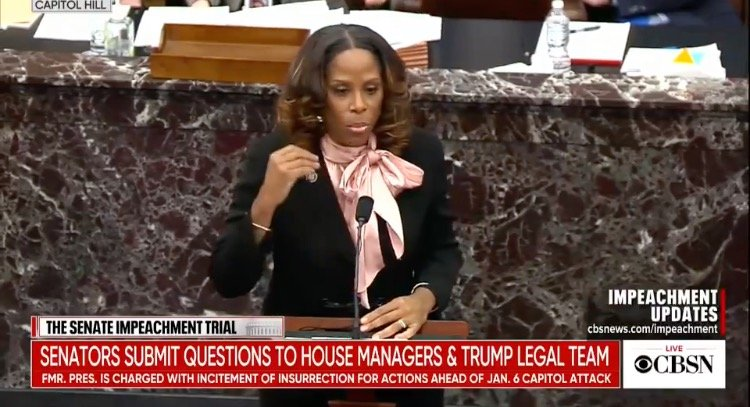 """Impeachment Manager Throws Down Race Card in Response to Video Montage of Democrats Using the Word """"Fight"""""""