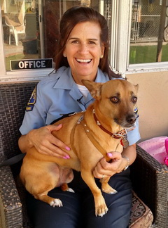 Friends of Newport Beach Animal Shelter Moves Closer to a Forever Home